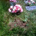 Grace's burial place