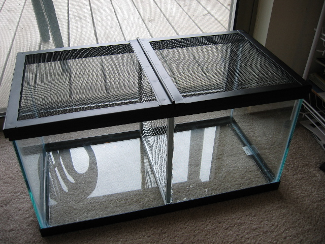 build a secure split tank ForSplit Fish Tank